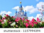 bright flowers on the... | Shutterstock . vector #1157994394