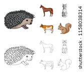 horse  cow  cat  squirrel and... | Shutterstock .eps vector #1158038314