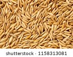 paddy  raw rice | Shutterstock . vector #1158313081