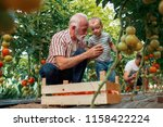 family working together in... | Shutterstock . vector #1158422224