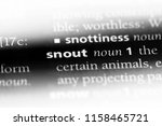 snout word in a dictionary.... | Shutterstock . vector #1158465721