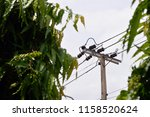 Electricity High Voltage Suppl...