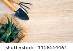 agriculture and gardening... | Shutterstock . vector #1158554461