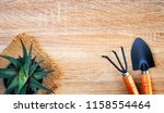 agriculture and gardening... | Shutterstock . vector #1158554464