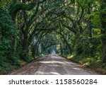 oak tree tunnel dirt road to... | Shutterstock . vector #1158560284