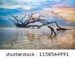 Driftwood Beach Sunrise In...
