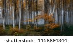 autumn foggy forest. balkan... | Shutterstock . vector #1158884344
