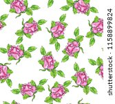 seamless pattern with beautiful ... | Shutterstock . vector #1158899824