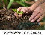 multicultural hands of adult...   Shutterstock . vector #1158918361