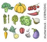 farm fresh vegetables set....   Shutterstock .eps vector #1158962041