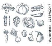 farm fresh vegetables set.... | Shutterstock .eps vector #1158962047