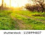 green grass and tree | Shutterstock . vector #1158994837