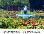 Stock photo water fountain surrounded by beautiful roses the municipal rose garden san jose south san 1159062631