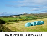 Row of plastic wrapped hay bales on a field with farm in background - stock photo