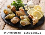 Seafood   Raw Whelk  Sea Snails ...