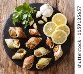 seafood   raw whelk  sea snails ... | Shutterstock . vector #1159135657