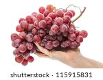 Large brush of red grapes on a female palm. Isolated on white background - stock photo