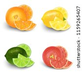 lemon  lime  orange  grapefruit ... | Shutterstock .eps vector #1159265407