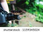 butterfly on vintage camera | Shutterstock . vector #1159345024