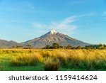 lush grass trees and the cone...   Shutterstock . vector #1159414624