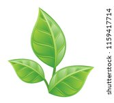 three green leaves on a white... | Shutterstock .eps vector #1159417714