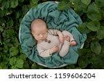 newborn child.  newborn photo... | Shutterstock . vector #1159606204