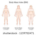 body mass index bmi.... | Shutterstock .eps vector #1159702471