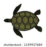 sea turtle vector illustration... | Shutterstock .eps vector #1159927684