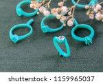 molds for making rings  green... | Shutterstock . vector #1159965037