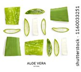 pattern with aloe vera.... | Shutterstock . vector #1160033251