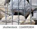 close up view of a steel gabion ... | Shutterstock . vector #1160092834