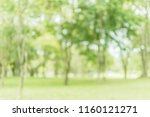 blurred of green trees lawn... | Shutterstock . vector #1160121271