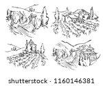 hand made sketch grape fields... | Shutterstock .eps vector #1160146381
