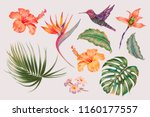tropical flowers  jungle leaves ... | Shutterstock .eps vector #1160177557