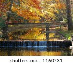 fall foiage | Shutterstock . vector #1160231
