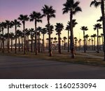 silhouette of palm trees at... | Shutterstock . vector #1160253094