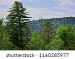 mixed coniferous deciduous...   Shutterstock . vector #1160285977