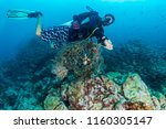 scuba diver removing an... | Shutterstock . vector #1160305147