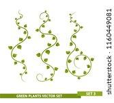 green vines   set 3 | Shutterstock .eps vector #1160449081