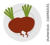 fresh beets in dish vegetarian...   Shutterstock .eps vector #1160463151