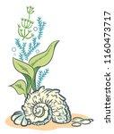 sea shell algae beach hand... | Shutterstock .eps vector #1160473717