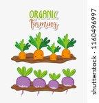 organic farming cartoons | Shutterstock .eps vector #1160496997