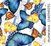 exotic butterflies wild insect... | Shutterstock . vector #1160540251