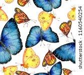 exotic butterflies wild insect... | Shutterstock . vector #1160540254