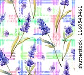 watercolor purple lavender... | Shutterstock . vector #1160543461