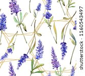 watercolor purple lavender... | Shutterstock . vector #1160543497