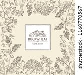 background with buckwheat ... | Shutterstock .eps vector #1160770567