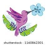 exotic bird cartoon | Shutterstock .eps vector #1160862301
