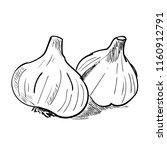 hand drawn sketch of garlic....   Shutterstock .eps vector #1160912791