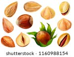 set of elements on isolated... | Shutterstock . vector #1160988154